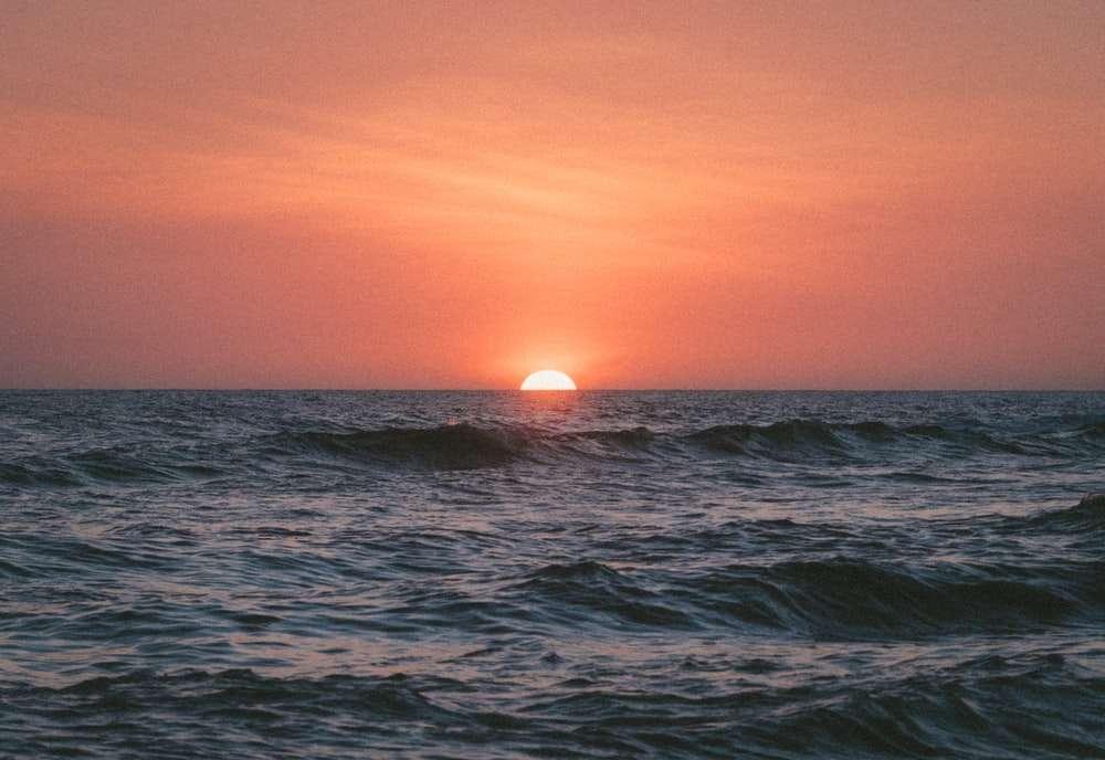 Ocean Nature.