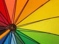 Kolorowy parasol w deszczu