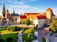 Kraków - Wawel w dzień