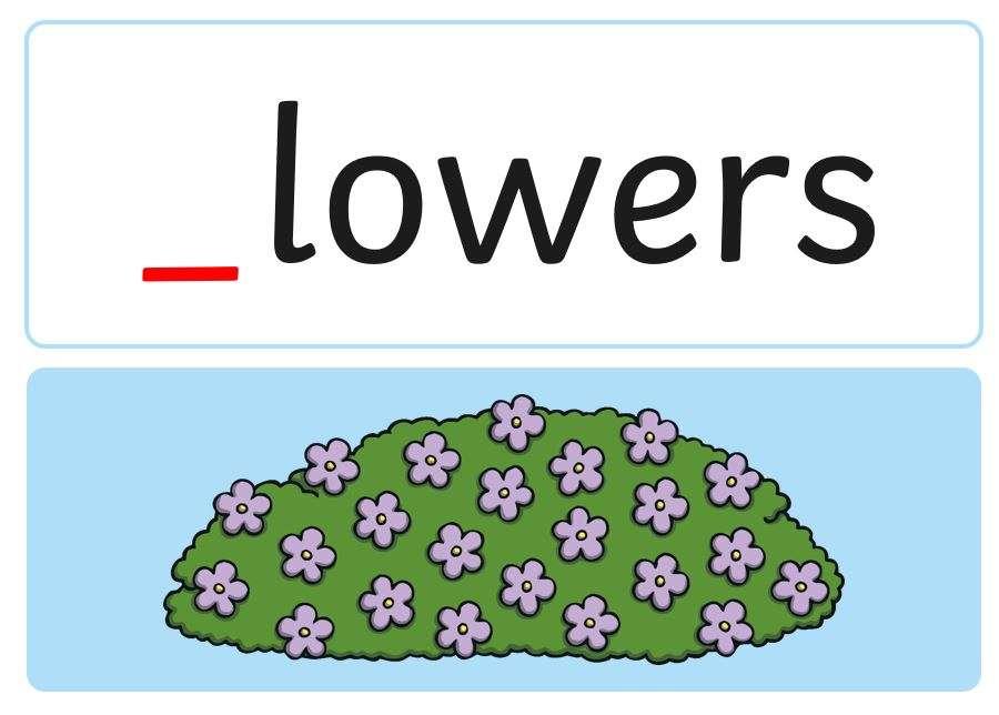 Kwiaty na fazę 2