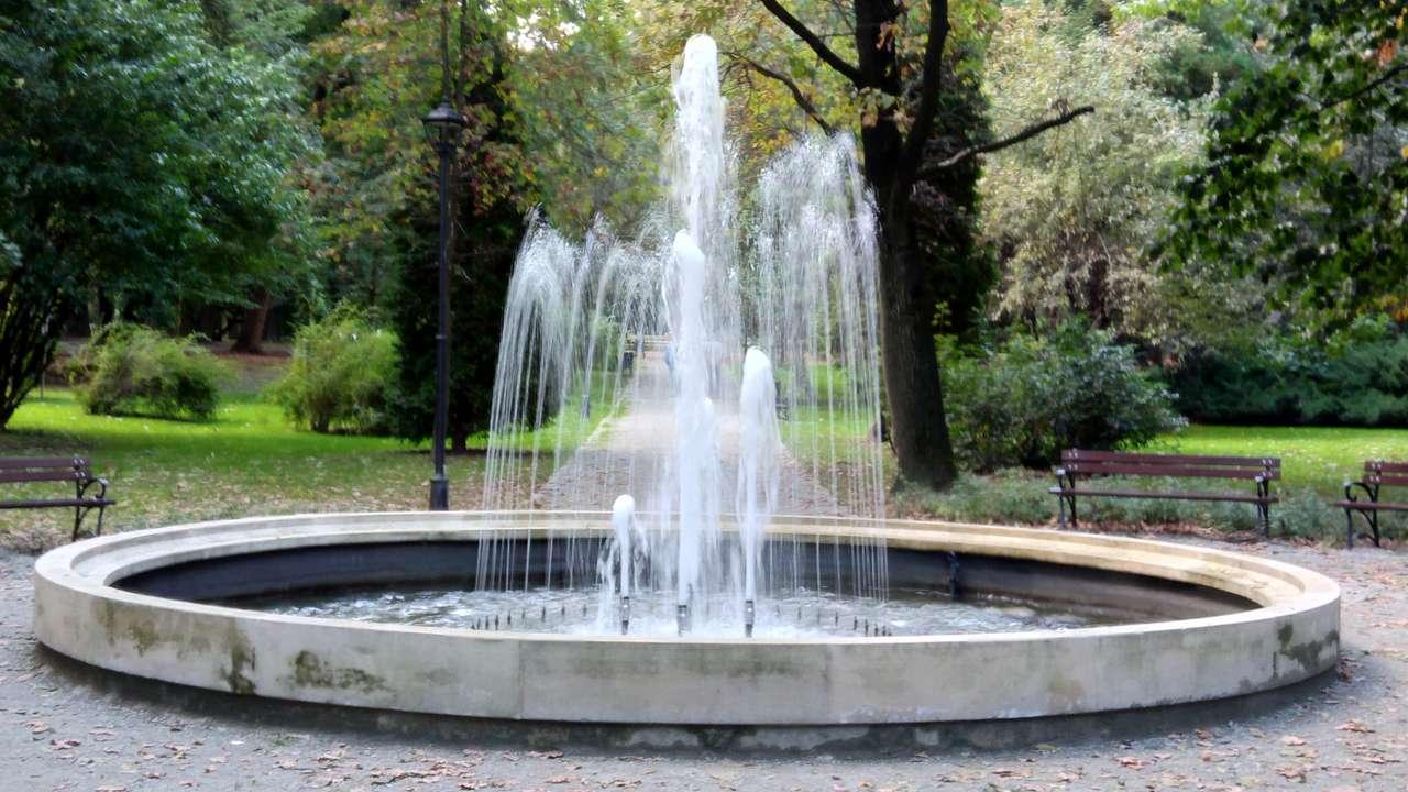 Fontanna w parku